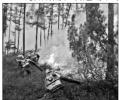 大兴安岭森林火灾 近4000人前往扑救