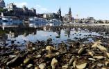 德国高温致河流水位下降 二战地雷炸弹频露面