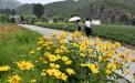 北京发布地质灾害易发景区绕行路线:部分山区景区建议不去