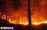 河北:严禁动员组织中小学生参加森林草原火灾扑救
