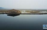 河北:切实加强河道安全行洪管理