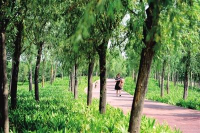 郑州生态廊道