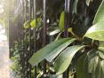 未来三天河南依旧秋雨绵绵 部分地区中雨局地大雨