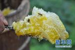 河北省市场监督管理局发布关于蜂蜜的消费警示