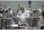 医用N95口罩日产能超340万只 中国医疗物资产能产量大幅增长